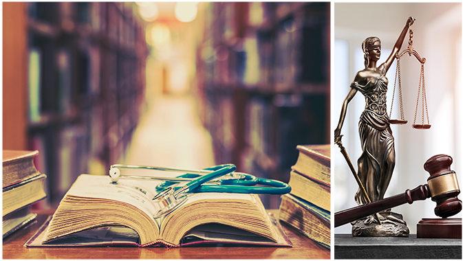 Mini-Medical School for Lawyers: What attorneys should know about anatomy, physiology, and injuries and treatment in relation to the law